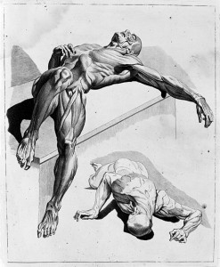 2_male_figures,_showing_muscles._Wellcome_M0007279